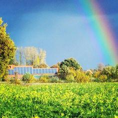 http://ift.tt/2dhx3LV #solar #photovoltaik #photovoltaikspeicher #energie #erneuerbareenergie #sun #sunenergy #photovoltaikspeicher #energy #solaranlage #solaranlagen #sonne #Regenbogen #rainbow #photovoltaikmodule