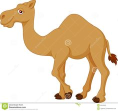 Cute camel cartoon vector image on VectorStock Adobe Illustrator, Scooby Doo, Vector Free, Cartoon Download, Disney Princess, Carino, Illustration, Cute, Animals