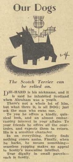 Scottie dog / From Australian Women's Weekly, October 1933 Cairn Terrier, Terrier Dogs, Scottish Terriers, Cairns, Dog Quotes, Westies, Dog Life, Puppy Love, Fur Babies