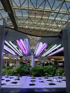 From Lawrence Kearns @larry_kearns at Loyola Institute of Environmental Sustainability EcoDome #OHC2014