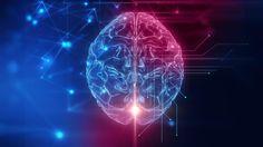 Se buscan 3.000 voluntarios para investigar las claves de un cerebro saludable.  Fuente: La Vanguardia  http//www.farmaciafrancesa.com