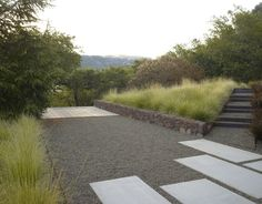 Geyserville Residence on The National Design Awards Gallery, 2014 Farmhouse Landscaping, Modern Landscaping, Garden Landscaping, Garden Steps, Garden Edging, Garden Landscape Design, Landscape Architecture, Park Landscape, Architecture Graphics