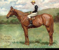 Atrato, with Ivor Anthony up - George Paice Drawing Animals, Animal Drawings, Horse Paintings, Horse Portrait, Horses And Dogs, Racehorse, Equine Art, Horse Pictures, Horse Art