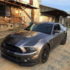 Ford Mustang Shelby GT500 Screaming With Passion For You To Please Its Need For Speed!