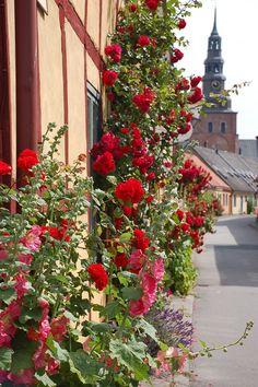 Ystad, Skåne.