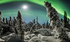 How to Use Scene Elements to Create Impactful Panoramas Digital Photography School, Night Photography, White Photography, Landscape Photography, Photography Lessons, Snow Covered Trees, Panoramic Images, Winter Scenes, Northern Lights