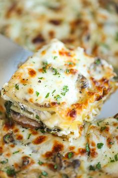 Creamy Spinach and Mushroom Lasagna – This is sure to become a family favorite. Best of all, it's freezer-friendly and can also be made ahead of time! Creamy Spinach and Mushroom Lasagna Veggie Recipes, Vegetarian Recipes, Dinner Recipes, Cooking Recipes, Mushroom Recipes, Mushroom Sauce, Cooking Ideas, Mushroom Risotto, Vegetarian Lasagna Spinach