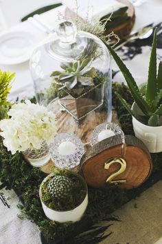 Botanical Olive Farm Wedding Centrepiece with wood table number | SouthBound Bride www.southboundbride.com/botanical-olive-farm-wedding-by-justin-davis-photography-rebecca-craig #botanical #organic #wedding  Credit: Justin Davis