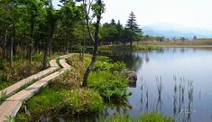 Shiretoko National Park Travel: Shiretoko Five Lakes (Shiretoko Goko)