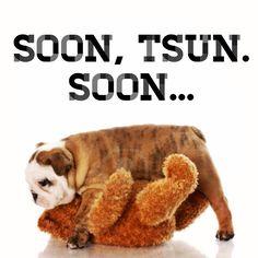 Soon, TSUN, soon... #HailState #EggBowl