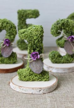 Moss Wedding Decor, Moss Decor, Wedding Hall Decorations, Wedding Table Numbers, Enchanted Forest Decorations, Moss Centerpieces, Enchanted Garden Wedding, Tea Party Baby Shower, Botanical Wedding