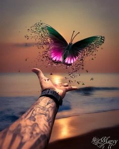 Prophetic art butterfly, freedom, fly dear one, fly! Butterfly Wallpaper, Butterfly Art, Colorful Wallpaper, Nature Wallpaper, Wallpaper Backgrounds, Butterfly Quotes, Art Prophétique, Art Papillon, Prophetic Art