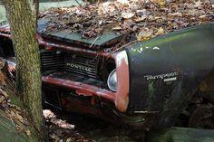 Pontiac Tempest Danny Zuko, Abandoned Cars, Abandoned Mansions, Abandoned Vehicles, Pontiac Tempest, Forgotten Treasures, Rust In Peace, City Car, Barn Finds