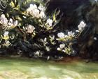 Magnolias - John Singer Sargent