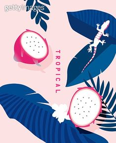 Summer Christmas, Fruit Illustration, Illustrations And Posters, Cute Designs, Game Design, Coloring Books, Pop Art, Concept Art, Tropical