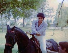 Elvis loved horses, especially his palomino Quarter Horse gelding Rising Sun. See rare photos of Elvis with his favorite horses. Elvis Presley Graceland, Elvis Presley House, Elvis Presley Photos, Rare Photos, Photos Du, Tennessee Walking Horse, Elvis And Priscilla, Idole, Hound Dog