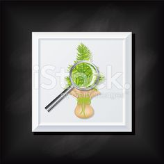 Tree And Magnifying Glass On A Square Blackboard Icon royalty-free stock vector art