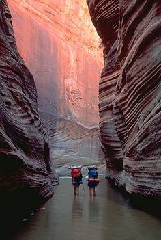 Hiking through Zion National Park. #placestogothingstosee #hiking #zionnationalpark