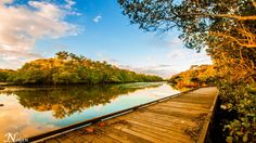 Things to do in Tweed Heads. The boardwalk.  Australia. The Sydney to Gold Coast drive along Australia's east coast. Things to do and best camping spots.