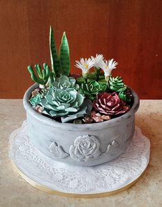 http://www.cakecentral.com/gallery/i/3364325/succulent-cake