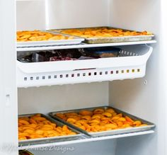 How to Freeze Peaches without Sugar, Taste Fresh Peaches Year Round. Easy Peach Pie, Best Peach Cobbler, Healthy Desserts, Healthy Recipes, How To Peel Peaches, Freezing Fruit, Canning Vegetables, Ripe Peach, Just Peachy