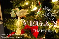 Vegan Holiday | Being Gratefully Vegan This Thanksgiving