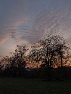 Twilight, Canton Ave., Toledo, O.