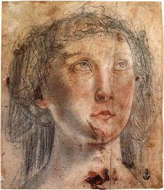 Piero Pollaiouolo: Portrait (1470s)