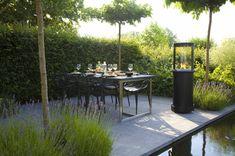 Großer Esstisch Mit Stühlen Und Eine Feuerstelle Im Garten