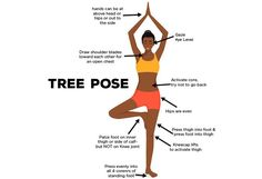 How To Do The Vrikshasana And What Are Its Benefits