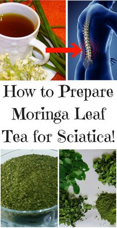 How to Prepare Moringa Leaf Tea for Sciatica Sciatica Pain Treatment, Treatment For Back Pain, Sciatica Pain Relief, Sciatica Exercises, Migraine Relief, Sciatic Nerve, Sciatic Pain, Arthritis, Natural Remedies