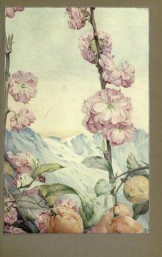 Edward J.Detmold 1917. by louise57