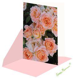 Diese Rosenkarte eignet sich da sie neutral ist zu verschiedenen Anlässen. Neutral, Joie De Vivre, Florals