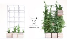 Home Café / Penda - 谷德设计网