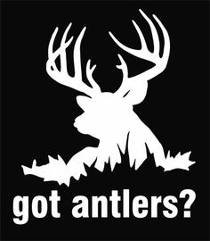 Quail hunting is one of the top outdoor lifestyle hobbies for those on the upper crust of society. It is considered the top game or hunt of the aristocracy and. Hunting Decal, Elk Hunting, Hunting Stuff, Window Decals, Wall Decals, Wall Art, Buck Deer, Deer Antlers, Hunting Girls