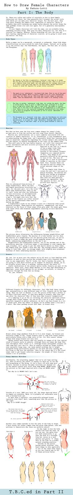 How to Draw Female Characters by Fadura-lotti.deviantart.com on @deviantART  Variety of female body types+breast physics (no, no juggle-physics)