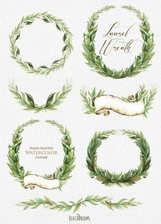 Laurel Wreath Watercolor Hand Painted Clipart by ReachDreams Watercolor Succulents, Watercolor Flowers, Wreath Watercolor, Watercolor Art, Watercolor Wedding, Green Watercolor, Wedding Cards, Wedding Invitations, Bay Leaves