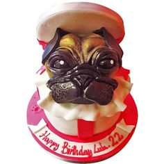 Pug In A Box Cakes Personalised To Any Requirement Free Next Day Delivery England