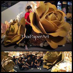 Huge rose 2 meter in handmade garden