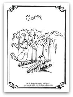 1000 images about Kids 39 Printable Garden Worksheets