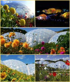 More images of The Eden Project Cornwall Wonderful Places, Great Places, Places To See, Beautiful Places, Places In Cornwall, Eden Project, Cornwall England, Biomes, Greenhouses