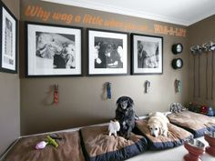 Alucinantes habitaciones para perros (FOTOS) - SitplasperroSitplasperro