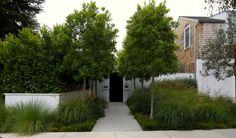Mark Tessier Landscape Architecture - Shiflett Residence