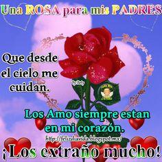 Una Rosa para mis PADRES que desde el cielo me cuidan. Los amo siempre están en mi corazón ¡Los extraño mucho!