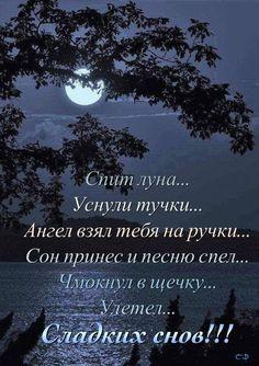 Good Night, Good Morning, Russian Quotes, Wish, Positivity, Humor, Motivation, Nighty Night, Amor