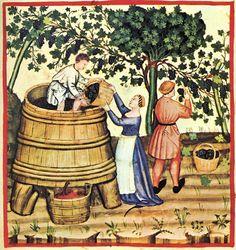 elaboracion del vino en la edad media