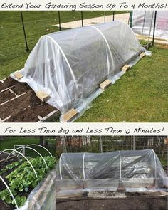 21 DIY Greenhouses with Great Tutorials - A Piece of Rainbow