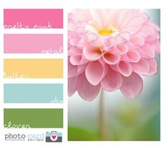 Beautiful color palette!