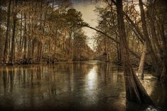 Muckalee Creek, Lee County Georgia Southern Comfort, Southern Charm, Mystery Series, Luke Bryan, Shiloh, View Image, Us Travel, Old Town, Whiskey