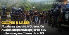 Una Avalancha para frenar a la MS en Honduras  Con dos fuertes golpes, la Policía y Fiscalía de Honduras ha desmantelado millonarios negocios de maras, creados con dinero de extorsiones y venta de drogas